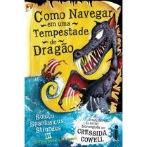 como navegar em uma tempestade de dragão